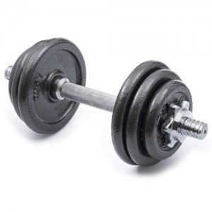 Standard Adjustable Dumbell & Weight Plates